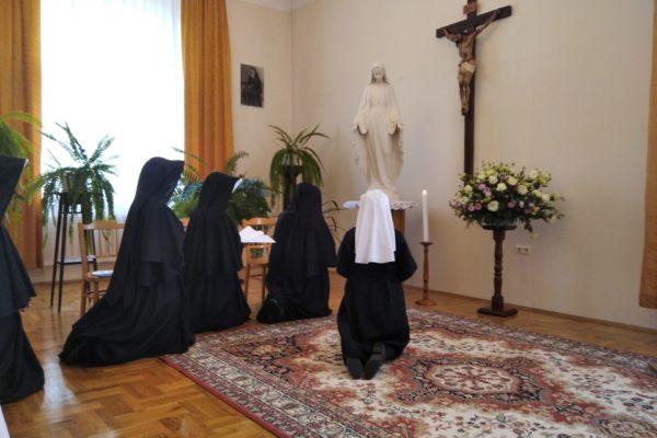 /home/www/kmbm.cz/www/kmbm.cz/wp content/uploads/2020/08/img 20200731 103035 1